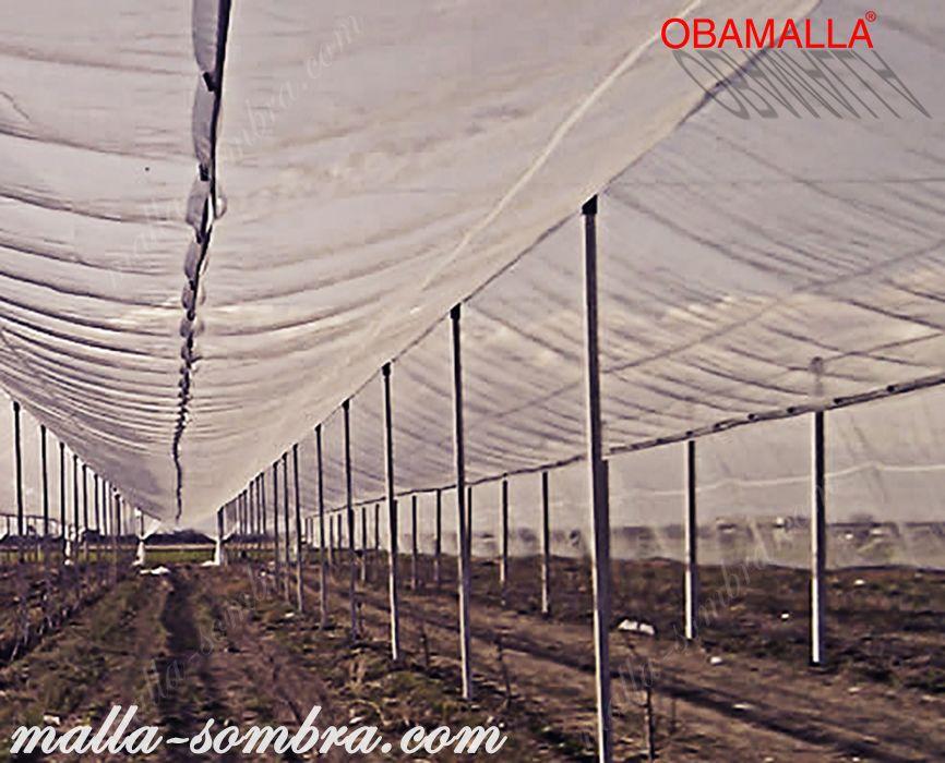 Casa sombra colocada para la protección de los cultivos.
